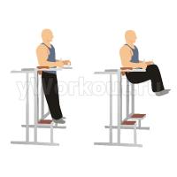 Подъем колен в тренажере с упорами для локтей