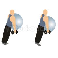 Подъем на носки с упором в фитбол на стене