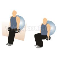 Приседания у стены с отягощением, используя фитбол